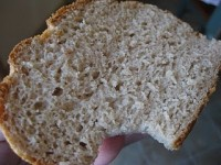 The Miracle Multigrain Rolls or Mini Bread Loaf