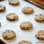 Chocolate Chip Cookie Bites (Grain, Egg & Refined Sugar Free)