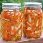 Kimchi Me Crazy (dairy free/Paleo & GAPS friendly)
