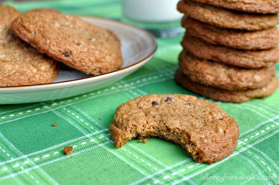 Toll House Style Chocolate Chip Cookies (gluten free, dairy free, soy free)
