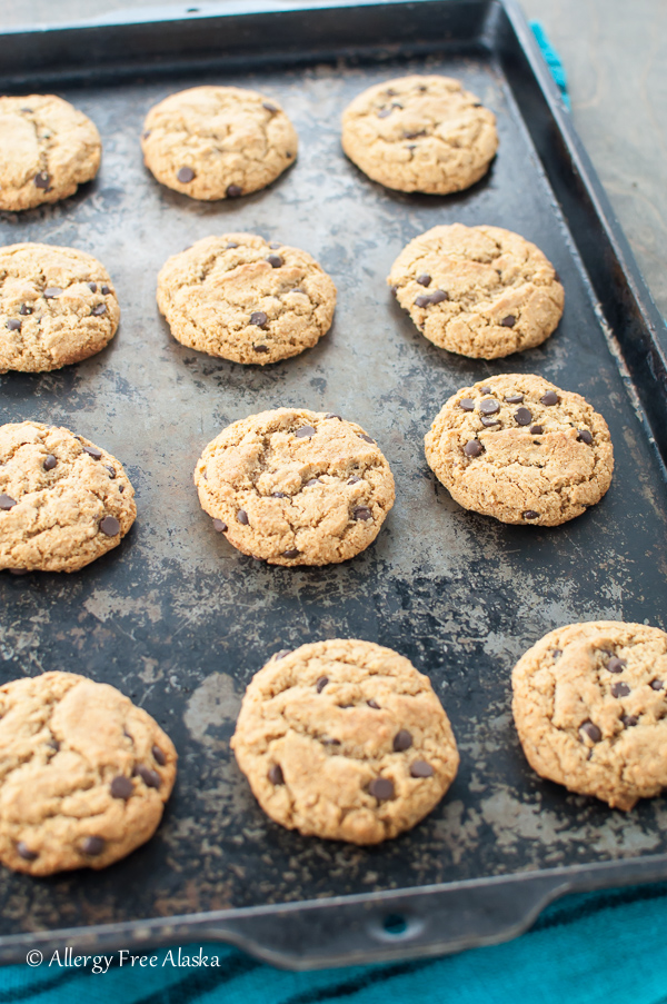 Ultimate Paleo Chocolate Chip Cookies - Allergy Free Alaska