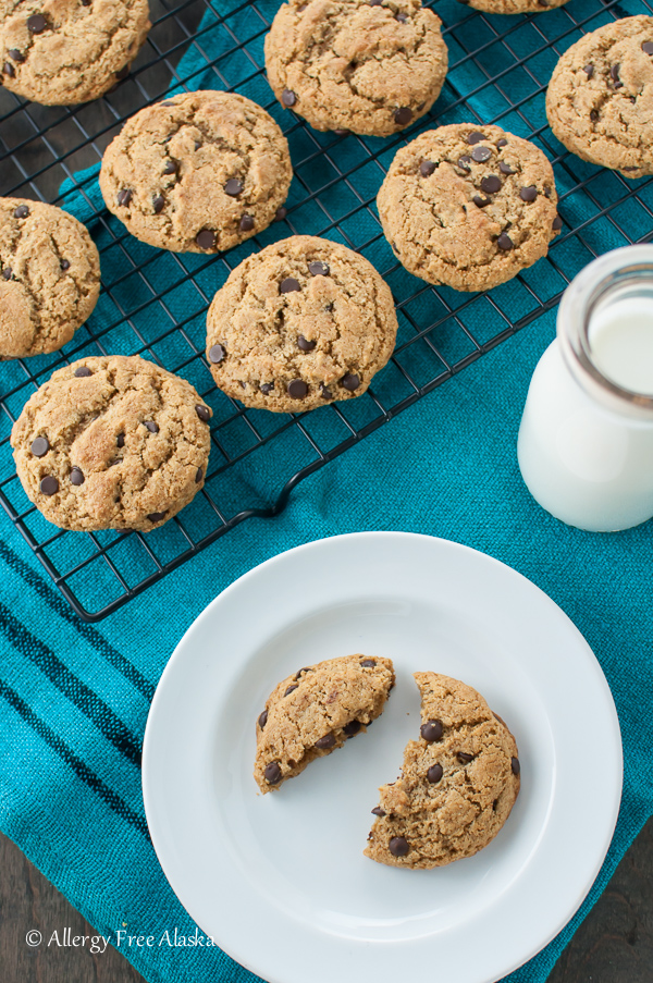 Ultimate Paleo Chocolate Chip Cookies Recipe from Allergy Free Alaska