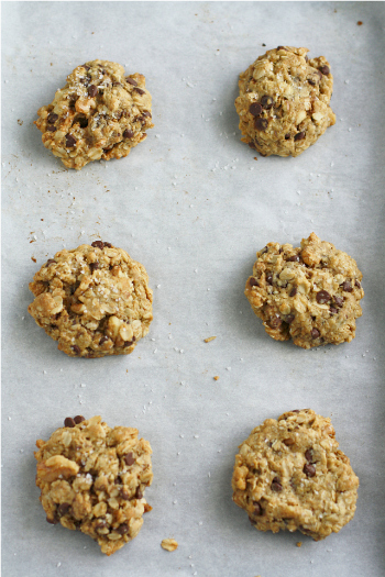 Vegan and Gluten Free Salted Chocolate Chip Oatmeal Cookies from The Pretty Bee