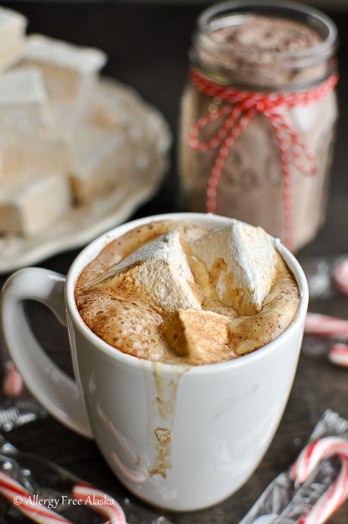 How To Make Hot Chocolate Mix Without Cocoa Powder