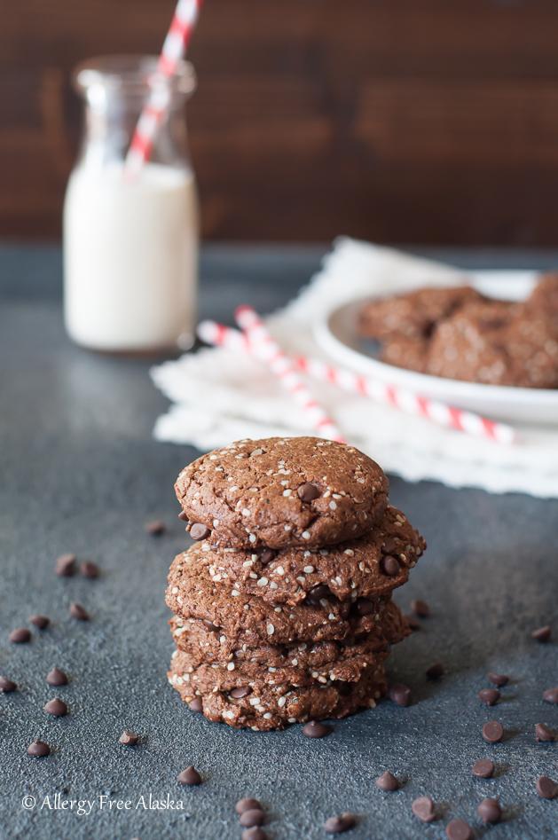 Paleo Vegan Double Chocolate Protein Cookies Recipe - Allergy Free Alaska