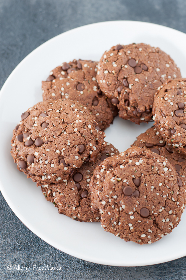Paleo & Vegan Double Chocolate Protein Cookies Recipe from Allergy Free Alaska. Nut-Free, Egg-Free, Soy-Free