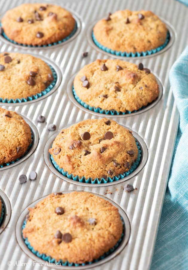 chocolate chip almond flour muffins sitting in metal muffin pan