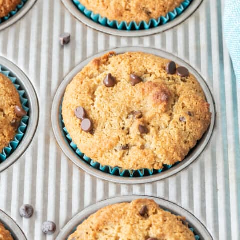 almond flour muffins with chocolate chips sitting in metal muffin pan